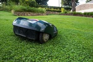 lawn-mower-414249_640(1)